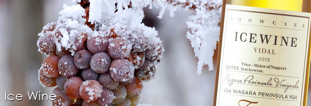 Dessert-Wine-Image-04.1