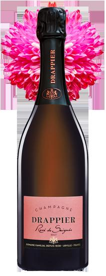 Valentine-Bottle-01