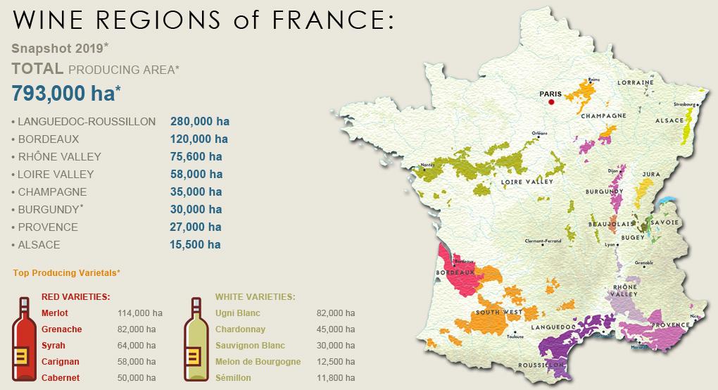 Wine-Regions-France-Image-01